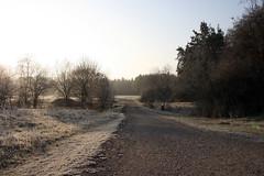 Weg am Hainberg (Oberasbach)