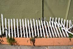 DSC_1268 (earthdog) Tags: 2018 needstags needstitle nikon nikond5600 d5600 18300mmf3563 sanfrancisco mission missiondistrict themission photostroll photowalk muralmissionphotowalk2018