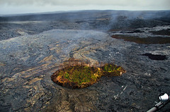 Oasis in a lava field, Kīlauea Volcano, Hawai'i (Gail K E) Tags: hawaii hawaiianislands kilauea volcano volcanicash hawaiivolcanoesnationalpark usa lava magma desolate bigisland