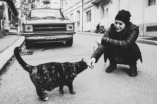 woman cat and car