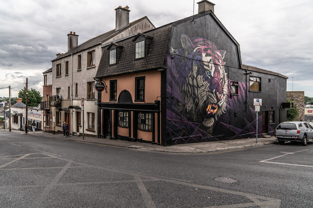 EXAMPLES OF STREET ART [URBAN CULTURE IN WATERFORD CITY]-142322
