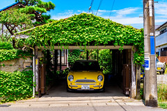 Colorful and lovely landscape with yellow mini and green ivy and blue sky : 黄色いミニと緑の蔦と青空のあるカラフルで素敵な風景 (Dakiny) Tags: 2018 summer july japan kanagawa kamakura nikon d750 tamron 35mm f18 tamronsp35mmf18divcusd tamronsp35mmf18divcusdmodelf012 sp35mmf18divcusd sp35mmf18divcusdmodelf012 modelf012
