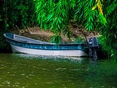 Tayrona (hector.landete) Tags: colombia tyrona jungle caribbean