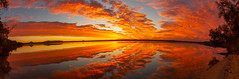 Lake Cooroibah panorama (Allieca Paterson) Tags: australia lakecooroibah noosa noosanorthshore queensland reflections sunset sunshinecoast mirrorimage