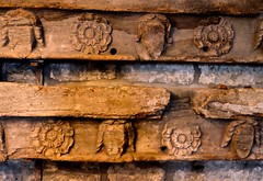Worm Holes (violetchicken977) Tags: texturaltuesday stoswaldscastlebolton tudorrose churchcarvings