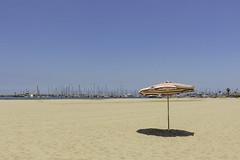 On the beach (Axel Heinbokel) Tags: horizon over water beach sun sunset coast sand coastline shore shoreline palm tree seashore blue