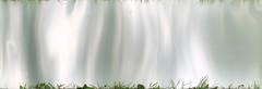 musing (Rosmarie Voegtli) Tags: foil grass waves reflections weiertal art kunst abstract konzeptkunst concept