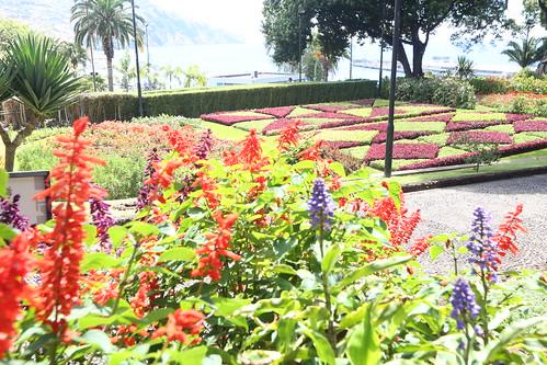 Rui Rio na Madeira