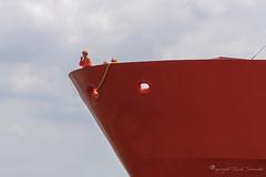 This is the captain of your ship speaking.... (Ruud.) Tags: ruudschreuder nikon nikond850 d8050 antwerpen antwerp schip ship boot bateau haven port harbour hafen oranje rood orange red