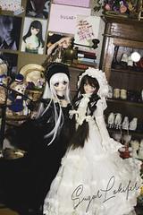 Tiramisu et Robista (Sugar Lokifer) Tags: dollfie dream ddh01 moe volks doll vinyl anime after school akihabara girl