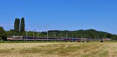 BB7301_Ozon (colson.p) Tags: bb7200 7200 sncf railway lourdes pelerins pelerinage pilgrim pilgrimage hambourg hamburg