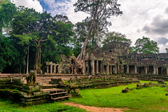Preah Khan Temple (Wolfhowl) Tags: 2018 palms landscape medieval buddhist reflection preahkhan sky hdr jayatataka angkor explore shrine pond trees summer sunrise water ruins travel asia siemreap august architecture dawn cambodia tourism temple dramatic