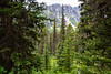 peak through trees (jlodder) Tags: alberta canada ca boomlaketrail banffnationalpark boommountain canon ef28mmf18usm