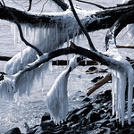 Icicles, Lakewalk, Duluth 4/17/18 #lakesuperior thumbnail