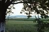 Les monts Jesenik à l'horizon (philippeguillot21) Tags: mont jesenik horizon moravie tchécoslovaquie europe verdure arbre tree pixelistes voigtländer vitoret