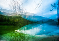 Yes (stefano.melas) Tags: landscape trees dream lake mind vision
