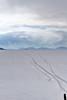 Bolivie 2017 (nouailleric) Tags: bolivie bolivia salarduyuni salar desert sal amériquedusud amériquelatine canon