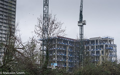 Still It Grows (M C Smith) Tags: construction cranes flats trees green bushes grey blue birds signs letters crane