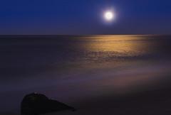 Moon Glow (Sandra's Weeds) Tags: nature sandrafelt sandravfelt myfujifilm moonlight moon seascape sunset seaside njshore bluehour