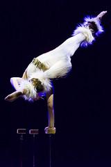 DAD_1236r (crobart) Tags: hand balancing cirque canadien acrobats acrobatics circus artist canadas wonderland cedar fair amusement theme park show