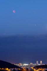 Lunar Eclipse Over Santa Cruz / Eclipse de Luna Sobre Santa Cruz (López Pablo) Tags: eclipse moon night blue city tenerife canary islands nikon d7200