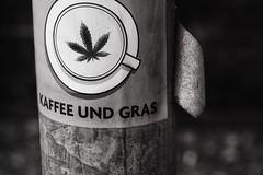 Kaffee und Gras ... (a└3 X) Tags: street alexfenzl black withe blackwithe olympus streetphoto blackandwithe monochrome streetphotography bw 3x city citylife urban buildings linz austria a└3x
