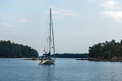 Segler (KL57Foto) Tags: 2018 juli july kl57foto omdem1 olympus schweden sommer summer sverige sweden schären schäreninsel schärengarten ornö archipelago