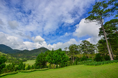 Mountain scenery at summer day (phuong.sg@gmail.com) Tags: abstract amazing asia asian background beautiful beauty central country countryside dalat forest grass green hanoi highlands hill impression jungle lamdong landscape landscaping mountain natural nature north outdoor park pine rural scene sightseeing tourism travel tree vietnam vietnamese view village wide wonder wonderful
