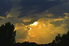Majestic Gold (Robin Shepperson) Tags: yellow orange amber sun summer evening light rays d3400 nikon berlin germany bright golden event view clouds weather warm gold earth