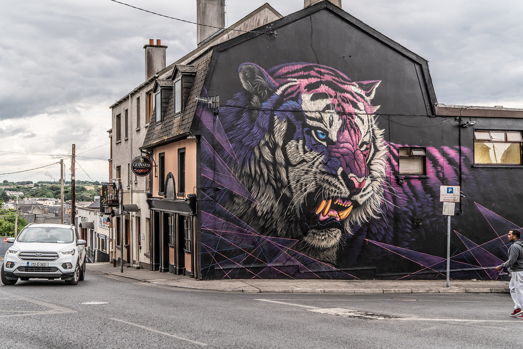 EXAMPLES OF STREET ART [URBAN CULTURE IN WATERFORD CITY]-142319