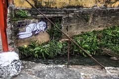 O progresso Matou o Rio (Felipe F Barros) Tags: rio poluição ponte molduranatural moldura emoldurar reflexo reflexos refletir reflex canon5d canon5dmarkiii markiii mark canon canonbr canonbrasil canonsãopaulo canonitapevi