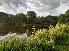 20180731 01 Groningen - Stadspark (Sjaak Kempe) Tags: 2018 zomer summer sjaak kempe motorola moto g5 plus nederland netherlands niederlande groningen stad stadspark city park vijver pond