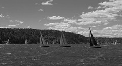 Sailboat Racing (Ken Pick) Tags: stockholmarchipelago sweden blackandwhite sailboats 118picturesin2018 watercraft racing 52in2018challenge summer
