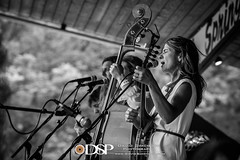 Lover's Leap - French Broad River Fest 2018 (David Simchock Photography) Tags: asheville bw fbrf frenchbroadriverfestival hotsprings hotspringscampground loversleap northcarolina avlmusic blackandwhite concert event festival image livemusic music performance photo photography usa