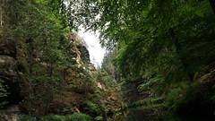 20180728_152146 (uweschami) Tags: mezna stimmersdorf böhmischeschweiz tschechien tschechischerepublik wandern hrensko navyhlidce zuraussicht