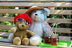 READY FOR A HOT DAY IN THE SUN    WIJ ZIJN KLAAR VOOR EEN HEET DAGJE IN DE ZON ! (Anne-Miek Bibbe) Tags: happyteddybeartuesday htbt teddybeartuesday bear teddybear beertje teddybeer beer speelgoedbeer nounours speelgoed toy spielzeug giocattoli juguetes bringuedos jouets zon sun hot heet sunglasses zonnebrillen canoneos700d canoneosrebelt5idslr annemiekbibbe bibbe nederland 2018