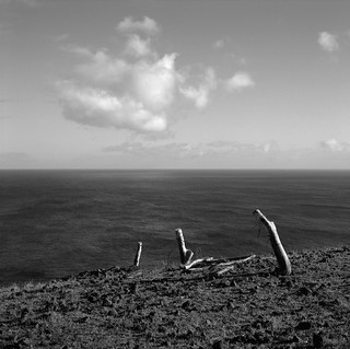 Fence Posts with Cloud, Easter Island