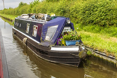 Day Seven: Stafford to Gailey (Explored 30-Apr-18) (Kev Gregory (General)) Tags: day seven sailing black country ring narrowboat buck from stafford gailey staffordshire canal narrow boat kev gregory canon 7d water holiday vacation scenic scenery rural quiet serene