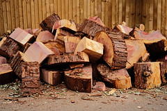 Logs (IMG_8848) (Piyushgiri Revagar) Tags: tree wood timber log lumber nature forest wooden material natural trunk isolated cut background brown firewood stack design industry bark ring stump white object pile forestry texture circle rough organic logging vector surface illustration fuel old pattern energy winter pine plant section cartoon element hardwood construction environment round grain woodpile piyushgiri revagar kruti akruti 22