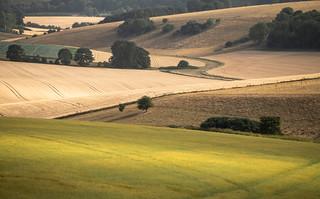 Interlocking Land