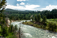 Yellowstone River near Tower Junction (Jim Frazier) Tags: 2018 201807montana 201807yellowstone 3d3layer ariverrunsthroughit bank forests framed framing jimfraziercom july landscape leadinglines lines mountains mountainsides nationalpark natural nature nps q4 rapids riparian river riverbank riverfront riverside rockymountains scenery scenic summer trees vacation water whitewater wyoming yellowstone yellowstoneriver f10