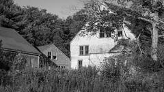 barn and homestead, Route 131, Saint George, Maine, Panasonic Lumix FZ200, 8.10.18 (steve aimone) Tags: barn homestead architecture architecturalforms trees grasses saintgeorge maine midcoast lumix lumixfz200 panasonic blackandwhite monochrome monochromatic landscape