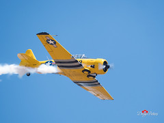 Truckee Airshow 2018 (DreyerPictures (10 million views - Thank You!)) Tags: gh5 gx8 lumix m43 m43ftw microfourthirds mirrorless outdoor panasonic truckee aircraft airplane airport airshow aviation dreyerpicturescom california unitedstates us aviationphotography instagramaviation planespotting aviationlovers aviationpictures aviationlife sacramento discoversacramento sacramentophotography micro43photography wherelumixgoes lumixmasters micro43 microfourthirdsgallery sacramentoproud exploresac viewsacramento cbs13 kcra avgeek flying aerobatics aviationgeek pilotlife