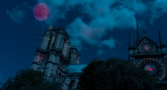 Notre Dame (S Hancock) Tags: sony a6300 france paris notre dame moon light beautiful night time 2018