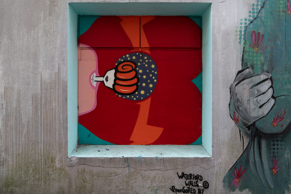 EXAMPLES OF STREET ART [URBAN CULTURE IN WATERFORD CITY]-142285