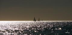 P1200503 (Denis-07) Tags: voilier mer bateau