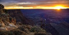 Grand Canyon (phillipjv) Tags: arizona summer sun national park clouds travel roadtrip grand lipon point rock river tree