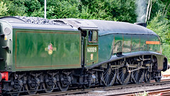 60009 Winchfield 26 July 2018 (16) (BaggieWeave) Tags: hampshire winchfield lswr southwestmainline southwestern a4 pacific 462 60009 unionofsouthafrica steamengine steamlocomotive steamtrain dorsetcoastexpress steam