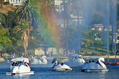 Rain Boats {as seen in Flickr Explore, July 26, 2018} (Pedestrian Photographer) Tags: summer leisure boats swans rainbow lotus echo park lake louts fest festival july 2018 los angeles california epl lotusfest ribbet fountain spray paddleboats socal essential