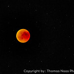 Blood Moon over Winterthur, Switzerland thumbnail
